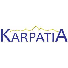 Металлочерепица модульная KARPATIA